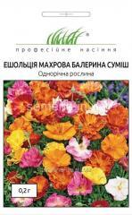 Flowers seeds, Odnoletnik Esholtion terry