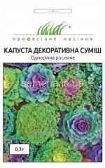 Flowers seeds, Odnoletnik Kapusta decorative,
