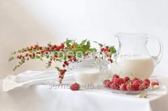 Flowers seeds, Odnoletnik Strawberry spinach,