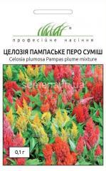 Flowers seeds, Odnoletnik Tseloziyapampaskoye