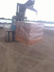 Brick for construction of buildings