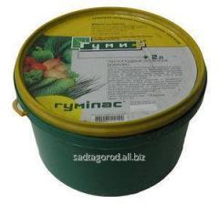 Fertilizer Gumipas of 2 l