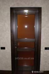 Door interroom with glass
