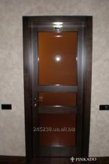 Door interroom with glass