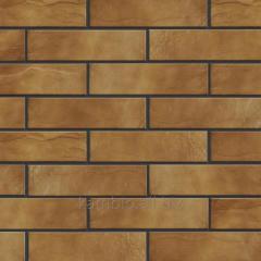 Brick Cerrad Arizona thermopanels
