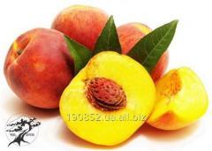 Peach of Summer Glow Love