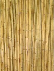 The bamboo is decorative.