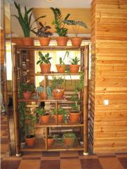 Меблі з бамбука. Етажерка.