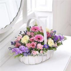Bouquet Colour of spring
