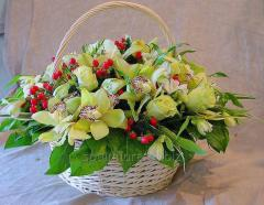 Bouquet Benidorm