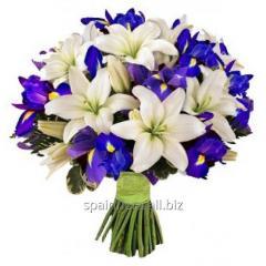 Bouquet Illusion
