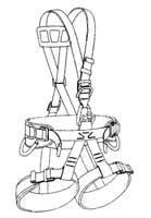 Belts harnesses