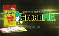 Biopowder for toilets and cesspools of GreenPig