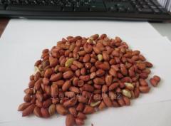 Peanut India weigh