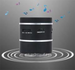 Acoustic autonomous vibro the loudspeaker 3W with