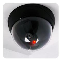 Chamber model, false, not real dome camera of