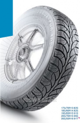 Tires with winter drawing of a protector Rosava