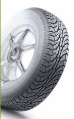 Tires with all-weather drawing of a protector