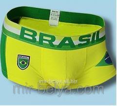 Hipsa Muzhskiye's pants Brasil football,