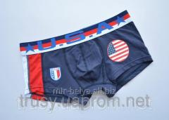 Hipsa Muzhskiye's pants U S A football
