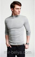 Golf man's the polo-neck light gray is