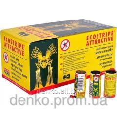 Adhesive tape from flies of Ecostripe Attractive