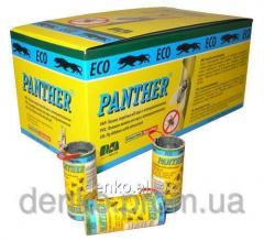 Adhesive tape from flies of Panther