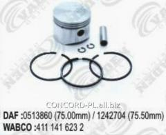 The compressor piston with VADEN 1310531 rings, an