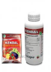 Kendal, biostimulator from Valagro, 25 ml, 1 l