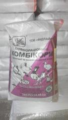 Комбикорм Фидлайф для кур-несушек гранула 25 кг