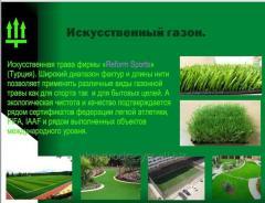Artificial lawn of Reforms Spor