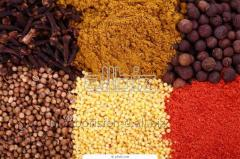 Spices and spices differen