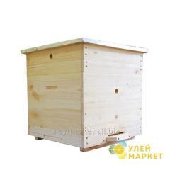 Beehive 12 frame Dadan of 300 mm 1 case, junior
