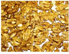 Орехи оптом цена