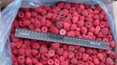 Berries fresh-frozen (raspberry)