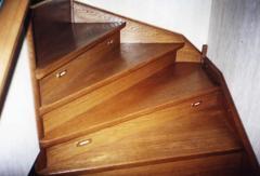 Steps from a beech (to buy, order Uzhhorod, Kiev,