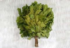 Oak bath broom