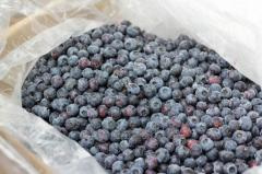 Fresh and frozen blueberry
