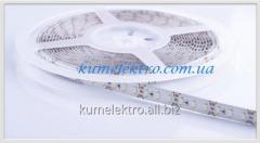 LED tape - 120 diodes 3528 on IP64 meter