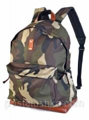 Backpack for the 14th laptop classical DERBY