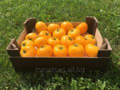 Los tomates