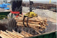 Estacas, suportes de madeira macisa