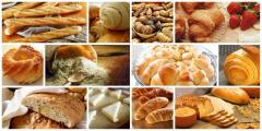 Additives for the baking industry