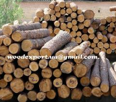 Round timber pine | Kiev the price - CPT, DAF