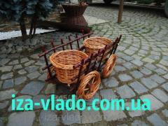 Cart code 202928522