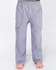 Trousers for the boy gray, a code: 3018