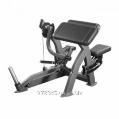 Biceps Inter Atletika X208 car