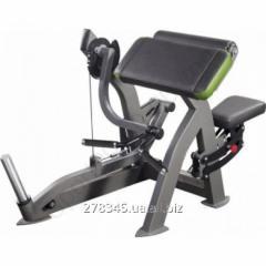 Biceps Inter Atletika XR208 car