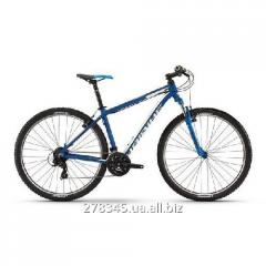 Haibike Big Curve 9.10 29 bicycle, frame of 50 cm,