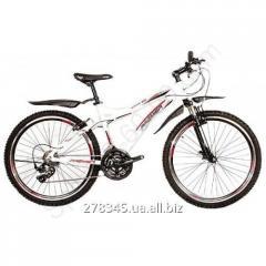 Bicycle Mountain Premier Bandit 3.0 17 TI-12600